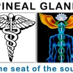 """The Mystical Marriage"" where Spirit and matter become ONE – PINEAL GLAND"